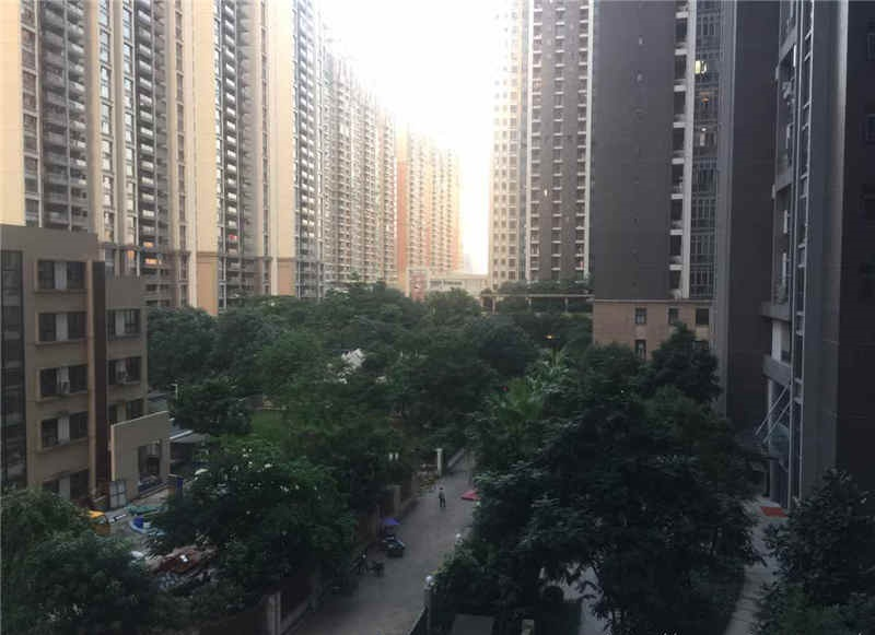 1 bedroom apartment for rent in Guangzhou, China